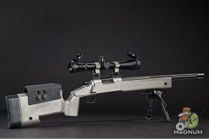 Airsoft Surgeon Titanium Sniper
